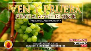 Ven y Prueba: Subate Al Monte Del Señor || Altar Especial Para Argentina
