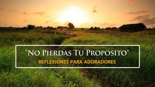 Reflexión - No Pierdas Tu Proposito